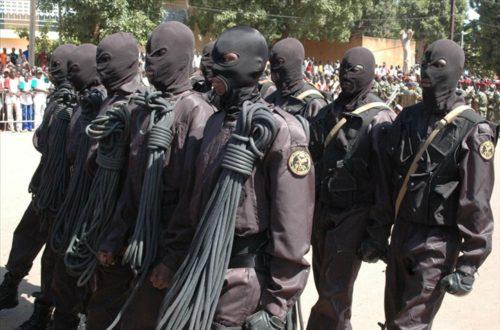 Article : Dans la « conscience » des coups d'Etats en Afrique