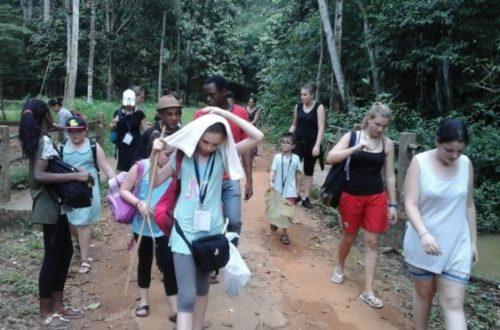 Article : Les Magiques Petits Tambours découvrent l'Afrique de l'Ouest : Retour sur un séjour inoubliable