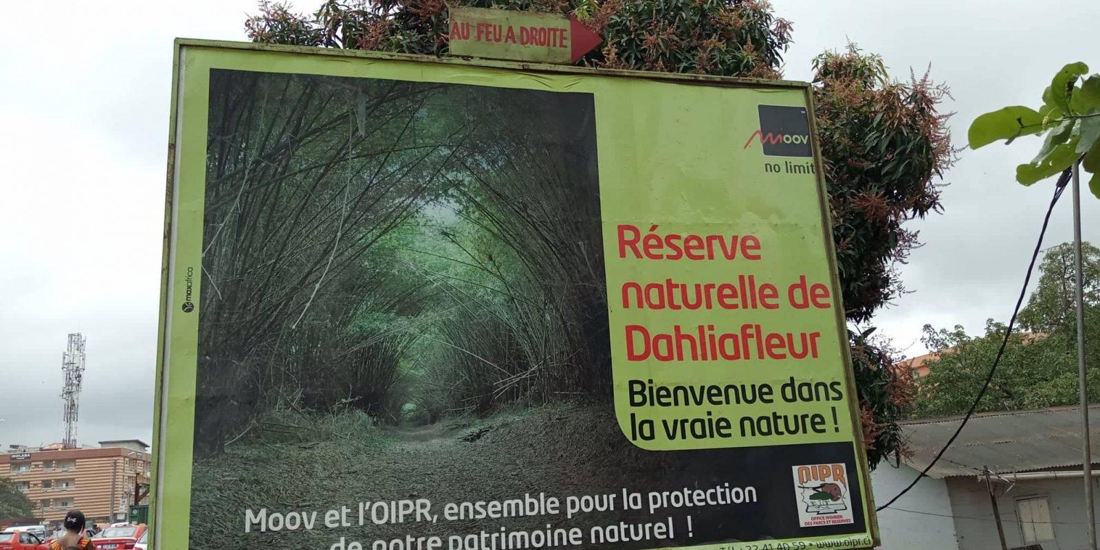 Réserve Naturelle de Dahliafleur