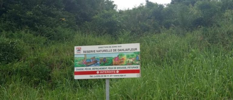 Article : Réserve Naturelle de Dahliafleur, la dernière née des Réserves Naturelles