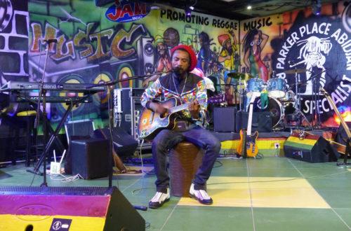 Article : Le festival Afropolitain 2019 fait vibrer le Parker Place au rythme du reggae